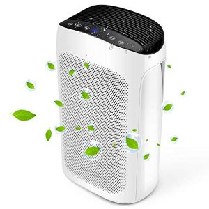 Air Choice Air Purifier Large Room